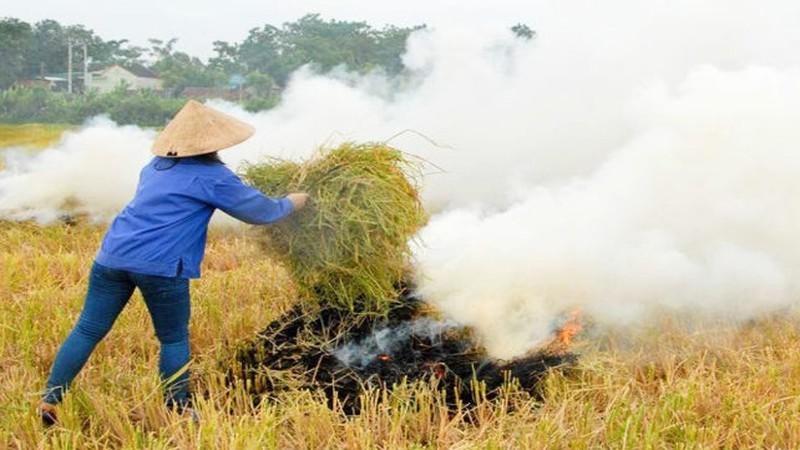 Kiểm tra đột xuất tình trạng đốt rơm ở các huyện ngoại thành Hà Nội