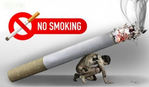 tác hại thuốc lá,bác sĩ