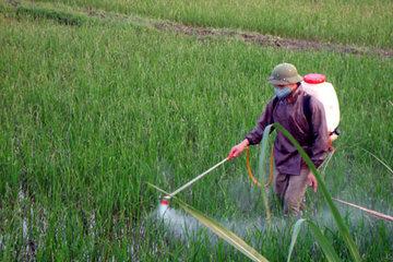 Hà Nội tìm giải pháp giảm ô nhiễm môi trường trong sản xuất nông nghiệp