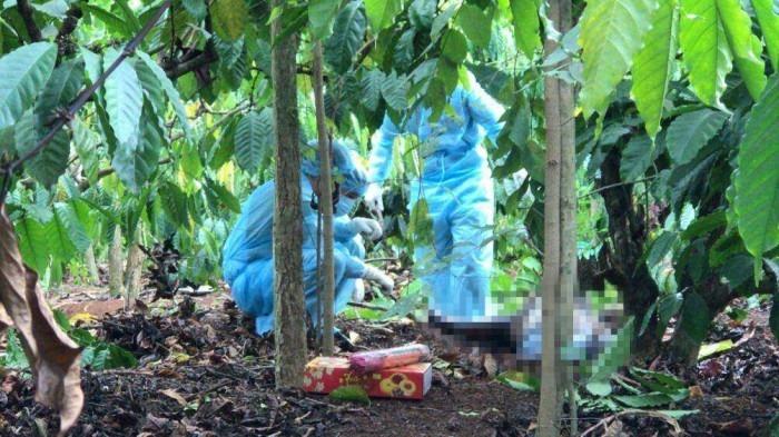 Đã xác định được nhân thân thi thể nam thanh niên không nguyên vẹn trong rẫy cà phê ở Đắk Lắk