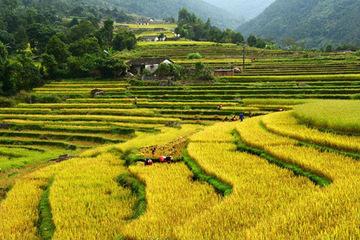 Quảng Ninh: Sẽ hướng đến phát triển khu du lịch tại huyện Bình Liêu