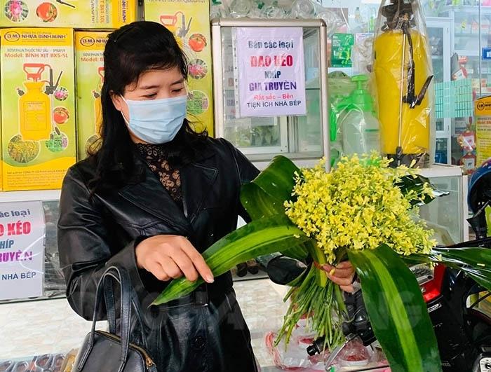 Ruộng súp lơ nở hoa vàng rực tưởng phải vứt bỏ, nhưng sự sáng tạo bất ngờ giúp anh nông dân Hải Dương thu tiền triệu