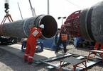 Các nghị sĩ đảng Cộng hòa quyết không 'buông tha' Nord Stream 2