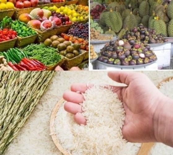 Mở cửa hàng kinh doanh nông sản sạch lúc này chắc ăn có lãi?