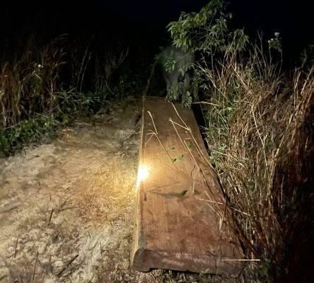 Phát hiện gần 40m3 gỗ 'vô chủ' trong vùng lõi rừng Krông Bông