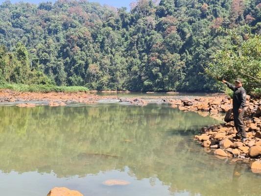 thủy điện,Đắk R'lấp,Đắk Nông,rừng phòng hộ,Nam cát tiên,quy hoạch,phá rừng,giữ rừng