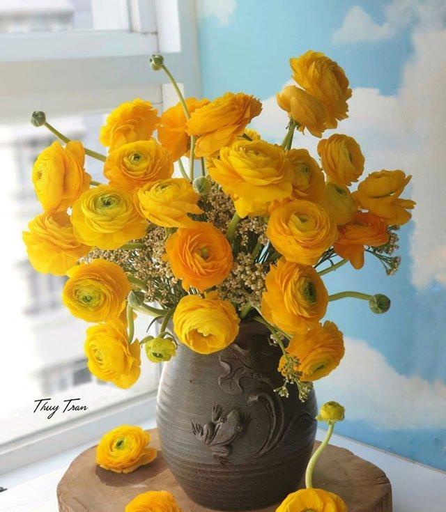Những cách cắm hoa mao lương đẹp, tươi lâu 10-15 ngày