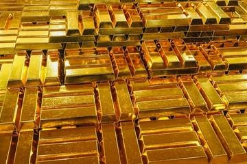 Nghi ngờ FBI cũng săn tìm kho vàng huyền thoại trị giá 500 triệu USD
