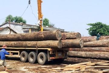Nghệ An: Đi dựng nhà giúp, người đàn ông bị cột gỗ đè tử vong