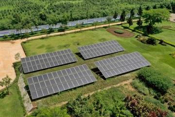 12 trang trại bò sữa 4.0 của Vinamilk đang được triển khai dùng năng lượng mặt trời