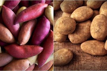 Vì sao ăn khoai lang tốt cho sức khỏe hơn khoai tây?