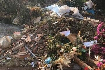 TP Buôn Ma Thuột thiếu tiền, giảm chi phí môi trường đô thị: Rác ùn ứ, cỏ chết cháy hàng loạt