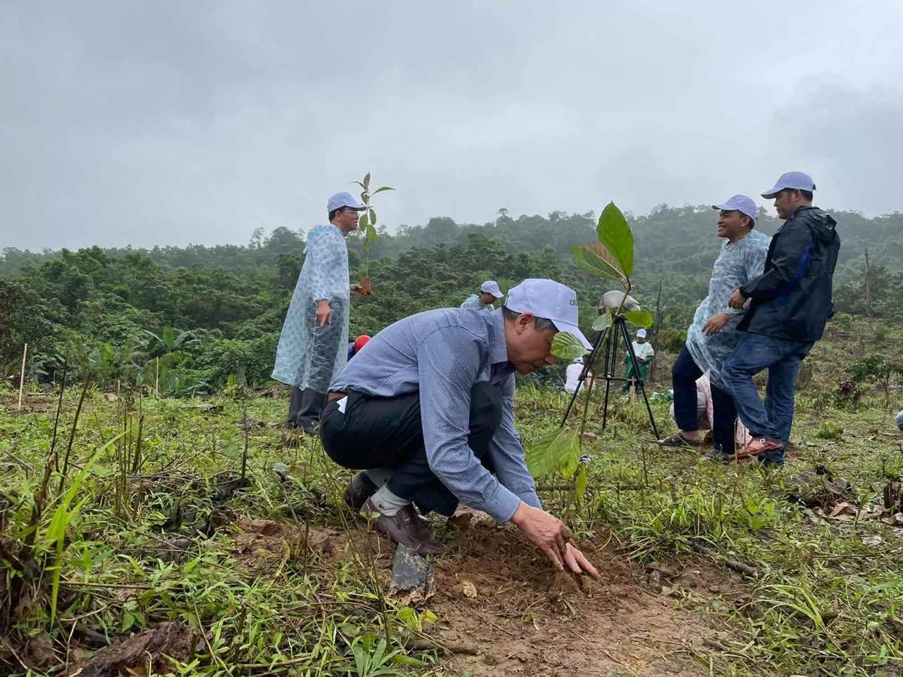 VARS,dự án,phục hồi rừng đầu nguồn,sông Gianh,Quảng Bình