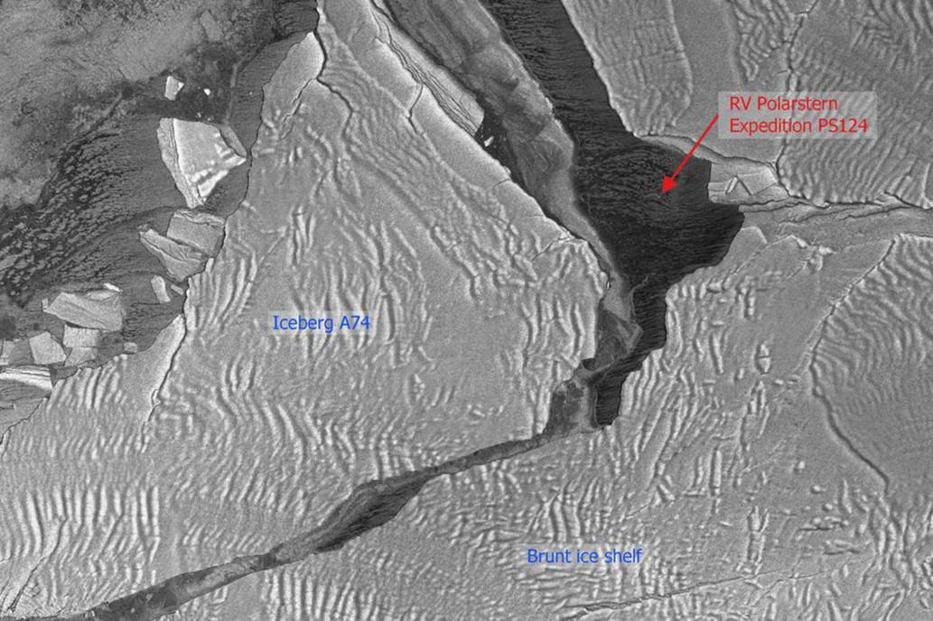 Sinh vật lạ bị mắc kẹt 50 năm dưới lớp băng Nam Cực