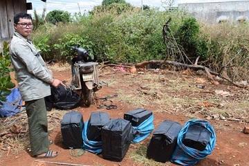 Gia Lai: Phạt 80 triệu đồng và tiêu huỷ gần 1.500 bao thuốc lá nhập lậu