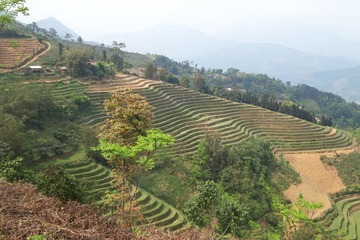 Hà Giang: Phát triển du lịch Hoàng Su Phì