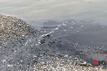 Nghệ An: Nước thải đen ngòm chảy thẳng ra sông Lạch Vạn, môi trường ô nhiễm nghiêm trọng