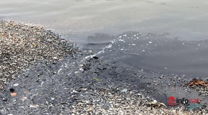 Cảng cá Lạch Vạn,môi trường ô nhiễm,xã Diễn Ngọc,tuyên truyền,Diễn Châu,Nghệ An