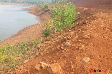 """Con đường không phép lù lù mọc lên vùi phá hàng nghìn m2 rừng, chính quyền tìm không ra """"thủ phạm""""?"""