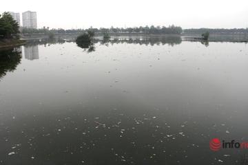 """Nghệ An: Hồ điều hòa ô nhiễm khắp nơi, những """"lá phổi đen"""" khiến người dân ngao ngán"""