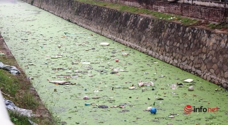Nghệ An: Hồ điều hòa ô nhiễm khắp nơi, những 'lá phổi đen' khiến người dân ngao ngán