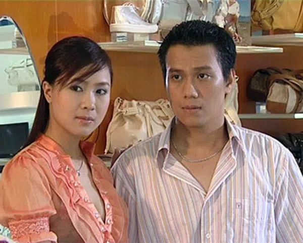 Diễn viên Việt Anh,Hồng Diễm,Hướng dương ngược nắng