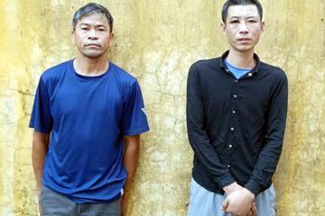 Nam thanh niên trộm lợn giống và người tiêu thụ bị khởi tố