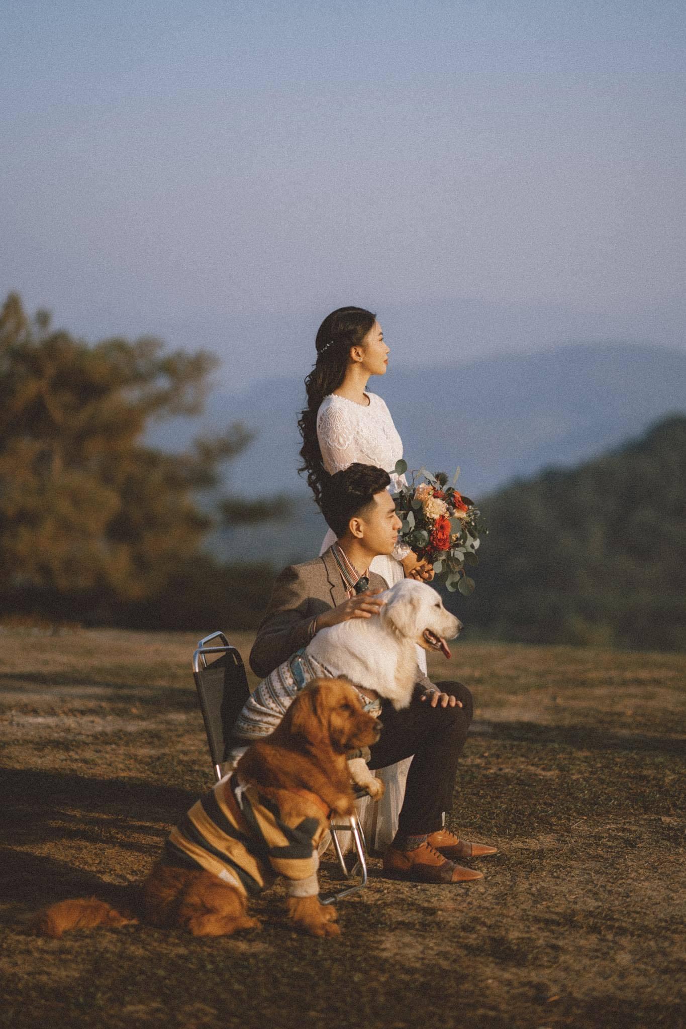 ảnh cưới với cún cưng,bộ ảnh Đà Lạt,cặp đôi với cún cưng