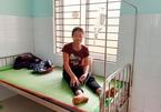 Quảng Nam: Ăn nấm 'lạ', 5 người nhập viện cấp cứu