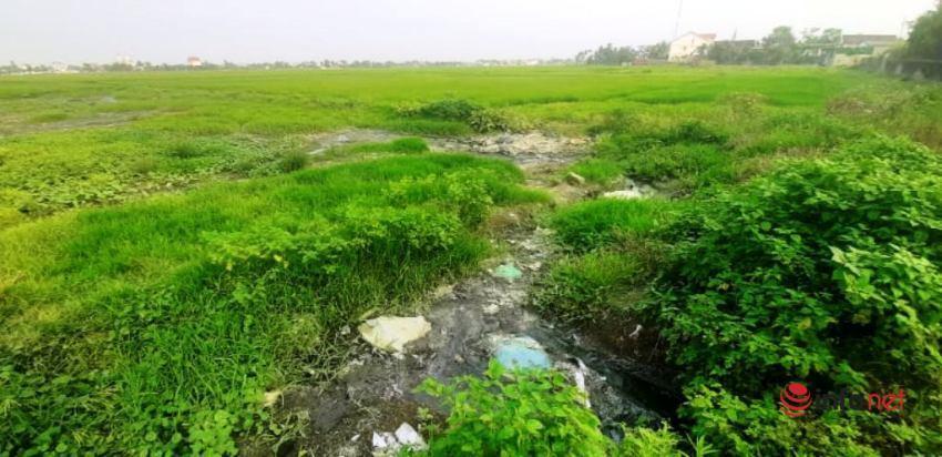 Nghệ An: Nước thải đen ngòm từ cụm công nghiệp chảy thẳng ra mương tưới tiêu