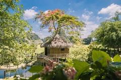 Hang Múa: Điểm đến yêu thích Năm du lịch quốc gia 2021 ở mảnh đất cố đô