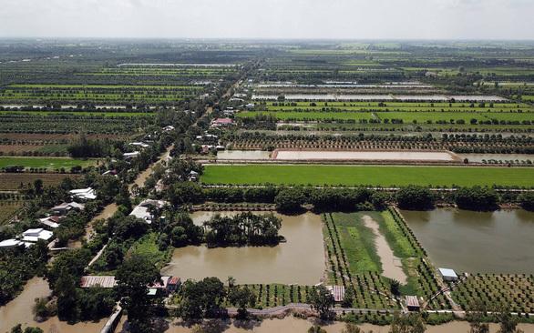 Ngân hàng rao bán khoản nợ trăm tỷ của Nông trường Sông Hậu