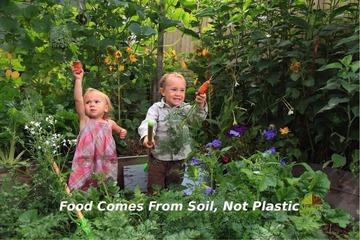 Kỹ sư dầu mỏ bỏ việc đưa vợ con về quê làm vườn để 'thay đổi thế giới bắt đầu từ điều nhỏ nhất'