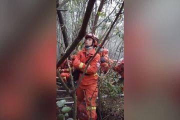 Xúc động hình ảnh lính cứu hỏa dựa cây ngủ gật trong rừng