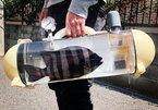Túi trong suốt độc lạ dành riêng cho cá cảnh 'đi khắp muôn nơi'