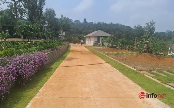 Nhà vườn trái phép mọc giữa rừng: Chủ nhà cáo bệnh không hợp tác