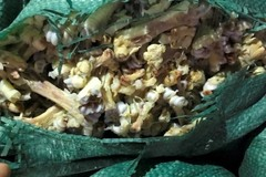 Phát hiện, thu giữ 4,5 tấn xương chân gà và thực phẩm không rõ nguồn gốc tại Quảng Ninh