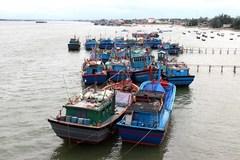 Bộ đội Biên phòng Thái Bình cùng phát triển kinh tế biển