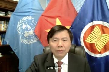 Việt Nam công bố chương trình trong tháng Chủ tịch HĐBA LHQ