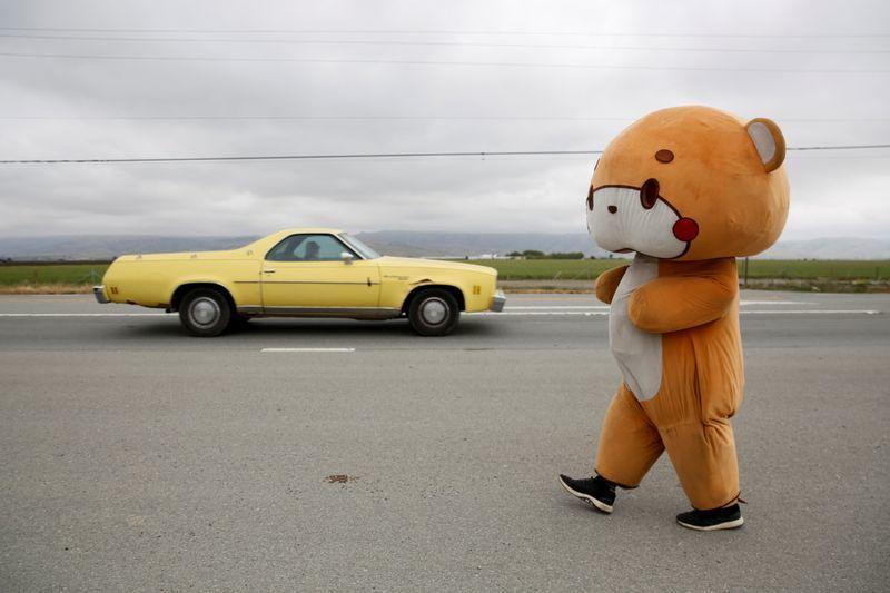 'Gấu bông' đi bộ 644 km thu hút nhiều người xin chụp ảnh cùng