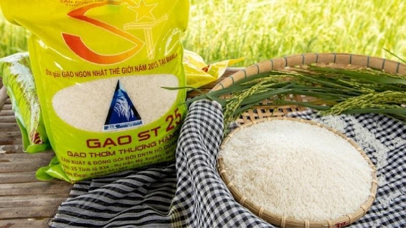 PAN Group nhận bảo hộ thương hiệu gạo ST24 và ST25 tại thị trường quốc tế