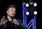 Elon Musk 'bốc hơi' hàng chục tỉ USD sau khi tham gia chương trình truyền hình