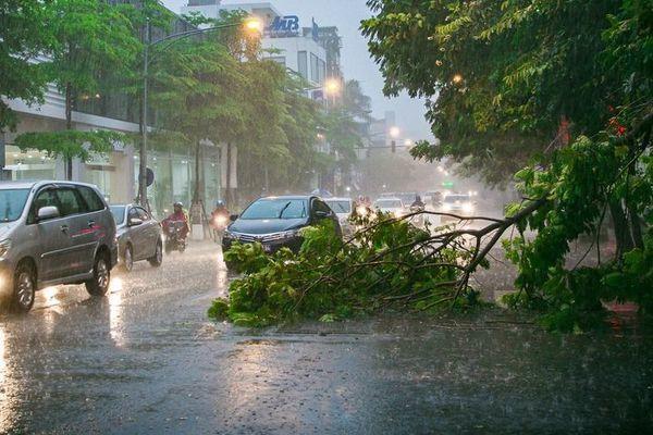 thời tiết,dự báo thời tiết,mưa lớn,ngập úng,lũ quét,sạt lở đất