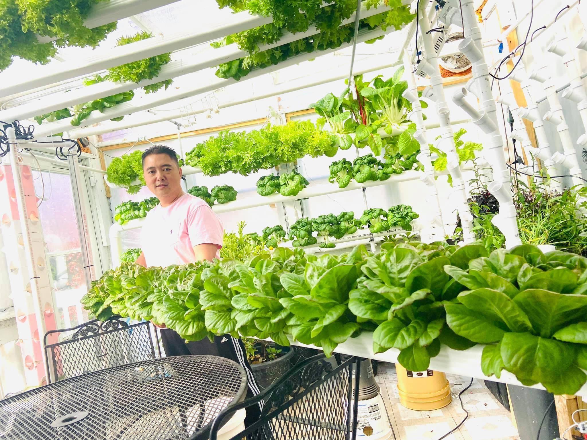vườn rau thủy canh,khu vườn đẹp,người Việt tại Mỹ,dạy con sẻ chia