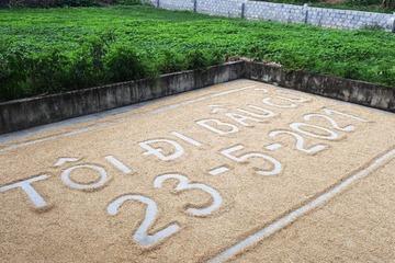 """Độc đáo khẩu hiệu """"Tôi đi bầu cử"""" giữa sân phơi lúa ở Nghệ An"""
