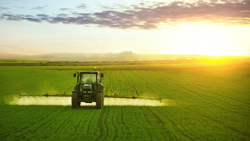 Chính phủ Anh trả tiền cho nông dân cao tuổi nghỉ hưu sớm