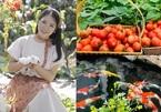 """Khu vườn rau quả """"cực chất"""" của bà mẹ 4 con bận bịu tối ngày ở Quảng Ninh"""