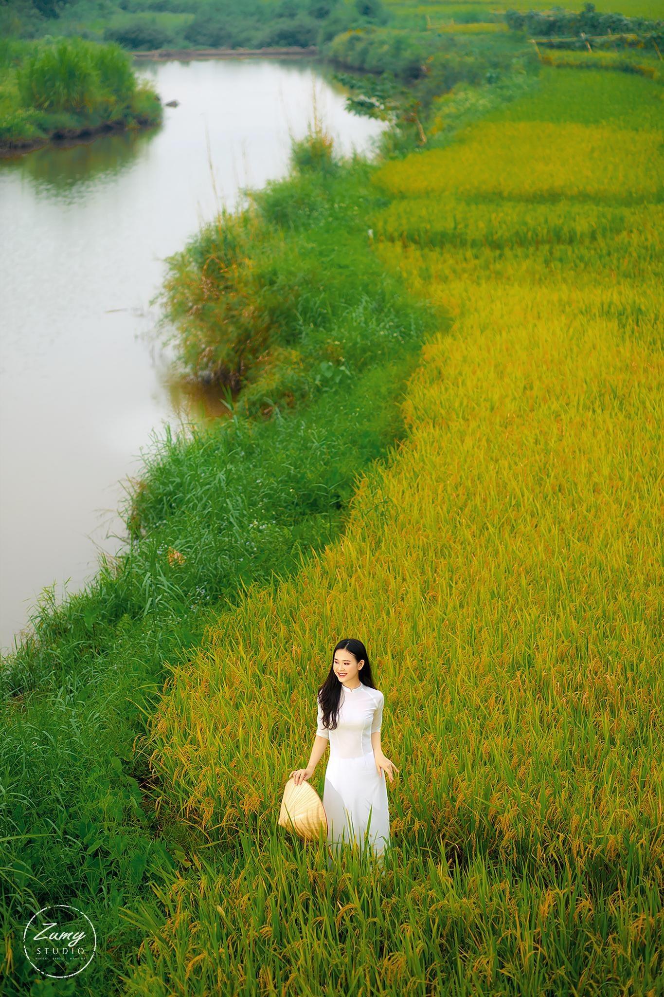 nữ sinh,Hòa Bình,bầu cử,Nguyễn Thảo Vi