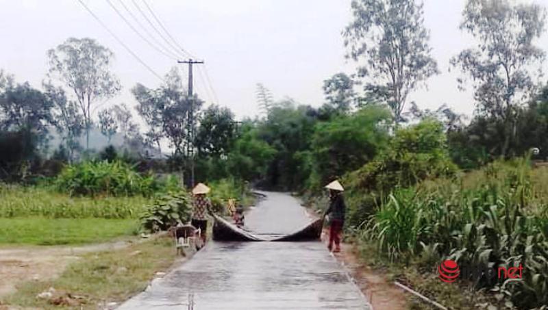 Anh nông dân bán cặp bò ủng hộ xã làm đường bê tông