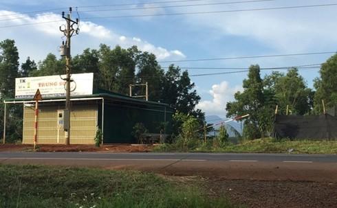 Cựu GĐ Sở KH&ĐT không được thuê lại 15ha đất từng bị thu hồi sổ đỏ